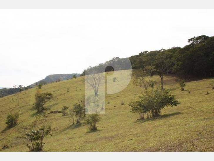 Fazenda / Sítio à venda em Bemposta, Areal - RJ - Foto 16