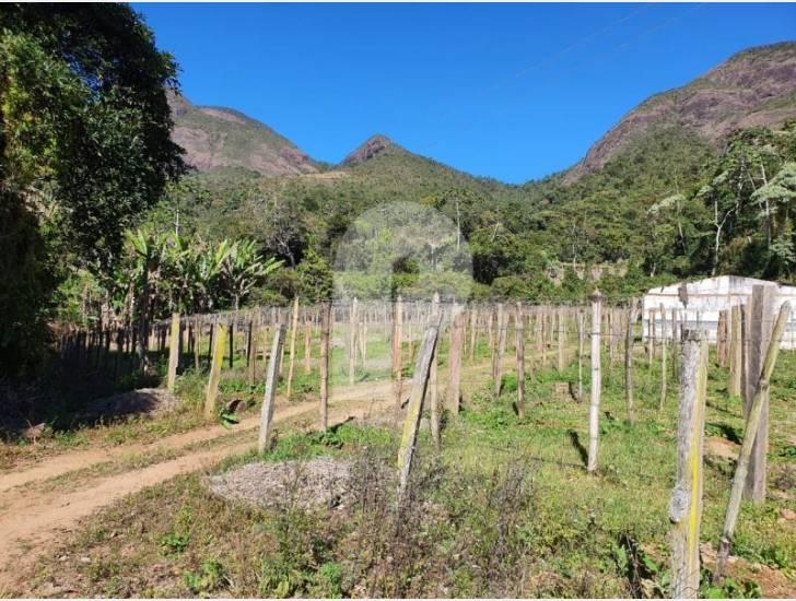 Fazenda / Sítio à venda em Posse, Petrópolis - RJ - Foto 18